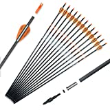 Pointdo 100% Carbon Arrow Practice Hunting Arrows with Removable Tips for Compound & Recurve...
