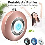 Personal Air Purifier Necklace, USB Portable Air Purifier, Wearable Mini Negative Ion Air Freshener, No Radiation Low Noise for Adults Kids Suitable for Home, Office, Indoor and Outdoor (Rose Gold)