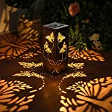 Solar Lantern Light...image