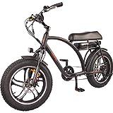 DJ Super Bike 750W 48V 13Ah Power Electric Bicycle, Matte Black, LED Bike Light, Suspension Fork and...