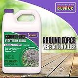 Bonide 5131 917348 Ground Force Non-Selective Vegetation Concentrate Killer, 1 Gallon, 1 gal, Brown/A