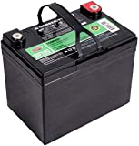 Interstate Batteries 12V 35Ah Deep Cycle Battery (DCM0035) Sealed Lead Acid SLA AGM Rechargeable Battery (Insert Terminals) Wheelchairs, RVs, Trolling Motors, Scooters