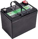 Interstate Batteries 12V 35AH Sealed Lead Acid (SLA) AGM Deep Cycle Battery (DCM0035) Insert...