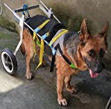 Adjustable Dog Pet Wheelchair, Hind Legs Rehabilitation, 7 Sizes (0-110lbs), Dog Cart,Wheels (6. Hip Height 22'-26.8', Weight:44-110lbs)