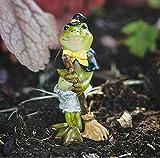 Fairy Garden - Figurine - Statuette - Miniature Dollhouse - Decor - Halloween Frog in Witch Costume