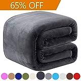 Richave Couverture Polaire 220x240cm Sofa et Lit en Microfibre de Polyester...