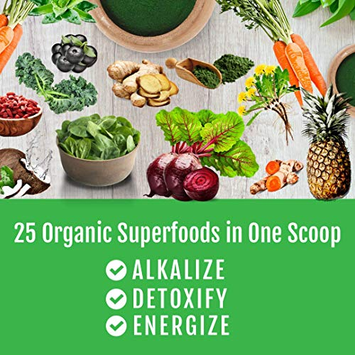 Detox Organics Chocolate Green Superfood Powder - Made with Organic Ingredients Like Kale, Wheatgrass, Chlorella, Spirulina, and Beet Juice - Perfect for Keto and Vegan Meal Replacement Shakes 5