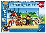 Ravensburger Puzzle 2000 Teile Der Giftschrank, Puzzle Für Erwachsene Und Kinder Ab 14 Jahren
