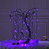 LIGHTSHARE 24-inch Halloween Willow Tree LED Spooky Bonsai Night Light,80 LED Lights, Battery Powered or DC Adapter(Included) for Home, Festival,Nativity, Party, and Christmas Witch Decoration,Purple