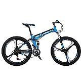 Eurobike SL-G6 Mountain Bike 21 Speed 26 Inches 3-Spoke Wheels Folding Bicycle(Blue)
