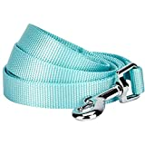 Blueberry Pet Essentials 19 Colors Durable Classic Dog Leash 5 ft x 5/8', Mint Blue, Small, Basic Nylon Leashes for Dogs