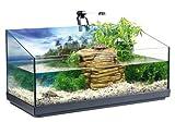 TETRA Repto AquaSet - Aquaterrarium Complet pour Reptiles et...