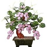 KAUTO Feng Shui Tree Jade para Escritorio, Vid, Bonsai, Cristales curativos, rbol de Dinero, Chakra, proteccin de Equilibrio, Mesa de hogar y jardn, Gran Regalo, prpura