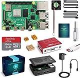 LABISTS Raspberry Pi 4 Model B 4GB RAM Starter Kit, RPi Barebone con MicroSD 64GB, Tipo C Alimentatore 5.1V 3A, Ventola, 2 Micro HDMI, Raspberry Pi 4 Case Protettiva Nera e Lettore di Scheda
