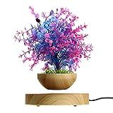 Macetero magntico flotante bonsi para plantas en maceta, decoracin de aire, suspensin flotante para el hogar