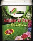 ALFE sulfate ferreux Vert correctives et Anti pour Plantes Fleurs prés de 5 kg