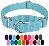 Country Brook Design - Martingale Heavyduty Nylon Dog Collar (Various Sizes & Colors) (Medium, 1 Inch Wide, Ocean Blue)