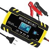 InThoor Chargeur de Batterie Intelligent 12V/24V 8A, 3 Étapes de Chargeur Batterie Mainteneur et Automatique Réparation Fonction pour Voiture Moto Camion, AGM, Gel, Wet, SLA(6-150AH)