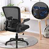 Office Chair Clearance, Ergonomic Desk Chair with Adjustable Height, Lumbar Support, High Back Mesh Computer Chair with Flip up Armrests, Task Chairs for Home Office - 300lb Executive Chair