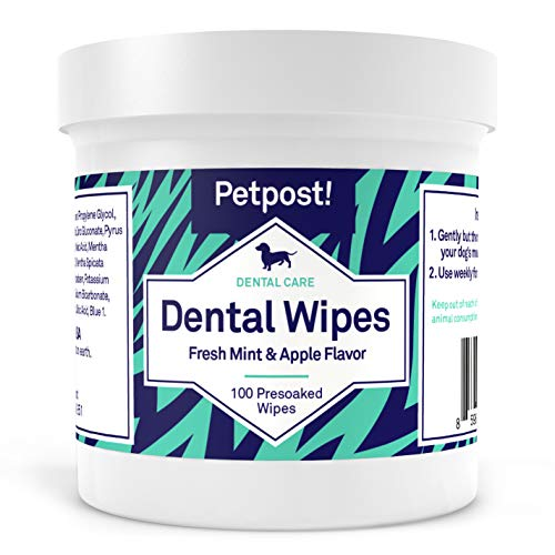 Petpost | Dog Dental Wipes: Bad Breath, Plaque and Cavities Disappear....