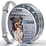 DYEOF Collier anti-puces anti-tiques pour chien - Protection 12 mois -...
