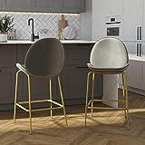 CosmoLiving by Cosmopolitan Astor Upholstered Counter, Light Grey Velvet with Brass Metal Leg Bar Stool, Gray