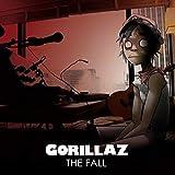Fall [Analog]