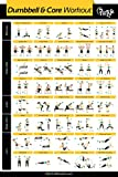 """My Fit Life Gym Dumbbell and Core Workout Poster Laminated :: Illustrated Guide with 40 Exercises for Full Body and Core : Hang in Your Home or Gym, for Men & Women, 24"""" x 36'"""