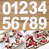 0-8 Numeral Cake Stencils Molds 10 Inch Arabic Number Cake Maker Decorative Fillings Layered Cake Baking Tools for DIY Wedding Birthday Anniversary (10 inch)