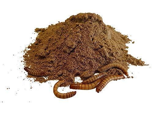 Commonbaits Insektenprotein 70% 1Kg Insektenmehl Camole Farina Terra