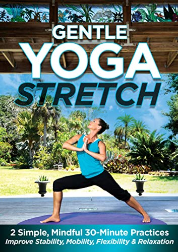 Gentle Yoga Stretch: 2 Simple, Mindful 30-Minute Practices to Improve Stability, Mobility, Flexibility and Relaxation with Jessica Smith [DVD]