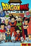 Dragon Martial arts Manga: Dragon-Ball-Full volume 16 (English Edition)