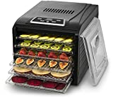 Gourmia GFD1650 Premium Electric Food Dehydrator Machine - Digital Timer and Temperature Control - 6 Drying Trays - Perfect for Beef Jerky, Herbs, Fruit Leather - BPA Free - Black