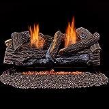 Duluth Forge Ventless Propane Gas Log Set-24 in Split Red Oak 33,000 BTU, Manual Control, 24 Inch