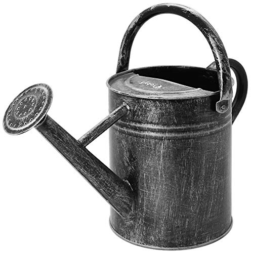 oby5 Metal Watering Can 1 Gallon for Outdoor & Indoor Plants, Decorative Farmhouse Style Vintage Galvanized Steel Watering Pot with Threaded Rose and Flexible Upper Handle (Straight Vintage)