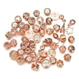 Pansona 10 Colors Assorted Silver Tone Charms Rhinestones Bead Charms Murano Glass Beads and Spacers Pack of 50 (Rose Gold)