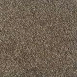 All American Carpet Tiles Wellington 23.5 x 23.5 Plush Easy to Install Do It Yourself Peel and Stick Carpet Tile Squares – 9 Tiles Per Carton – 34.52 Square Feet Per Carton (Woodstock)