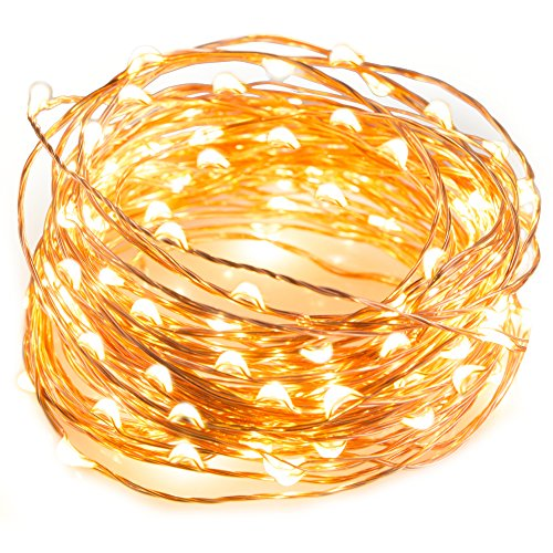 TaoTronics LED String Lights 33 ft with 100 LEDs, Waterproof Decorative Lights for Bedroom, Patio, Parties (Copper Wire Lights, Warm White)