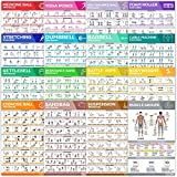 16-Pack Laminated Large Workout Poster Set - Perfect Workout Posters For Home Gym - Exercise Charts Incl. Dumbbell, Yoga Poses, Resistance Band, Kettlebell, Stretching & More Fitness Gym Posters