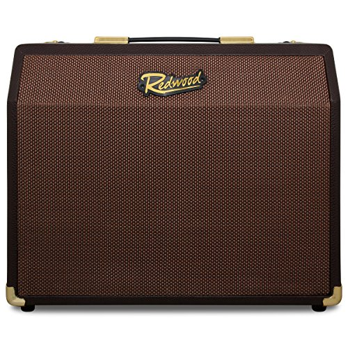 Redwood A-25RC 25W Acoustic Guitar Combo Amplifier With Microphone Input