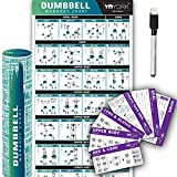 YoYork Workout Posters for Dumbbell Training - Laminated Home Gym Workout Poster with 10 Workout Cards for Free Weight, Body Building Exercise - 17' x 45'