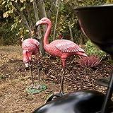 Relaxdays Dekofigur Flamingo, wetterfest, frostfest, Gusseisen, Innen und Außen, Gartendeko, HxBxT 56 x 35 x 18 cm, pink - 2