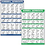 QuickFit Dumbbell Workouts and Barbell Exercise Poster Set - Laminated 2 Chart Set - Dumbbell Exercise Routine & Barbell Workouts (18' x 27')