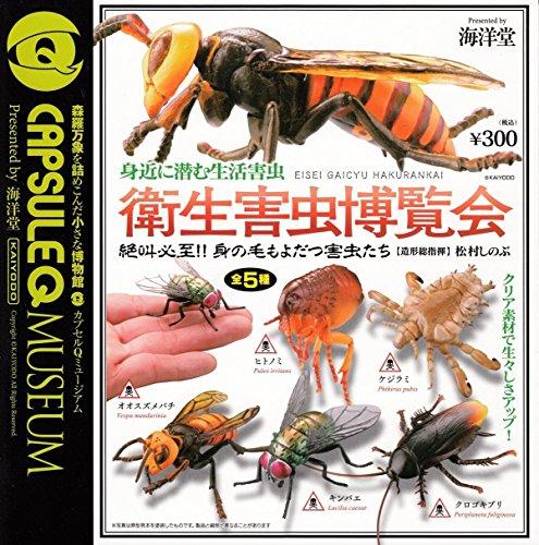 カプセルQミュージアム 身近に潜む生活害虫 衛生害虫博覧会 全5種セット