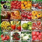 Set de graines de tomates 16 x 10 graines Mélange de tomates 100% naturel, graines...