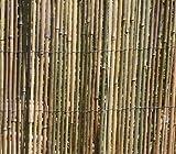 Clôture de protection en bambou - Dimensions: 5 m x 1,5 m
