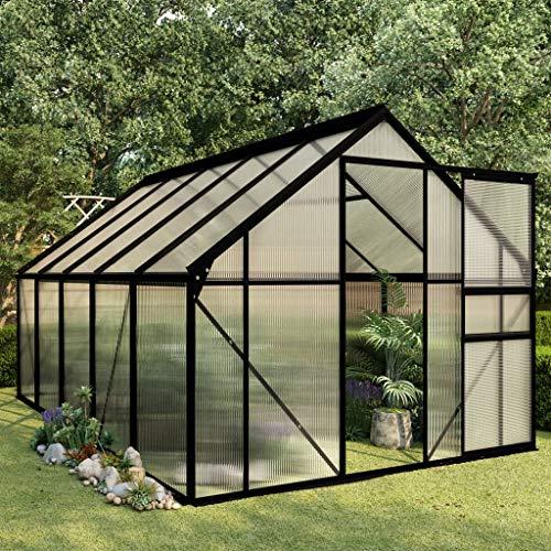 Festnight Serre de Jardin Tente pour Plantes en Aluminium Résistance aux UV Anthracite 5,89 m²