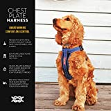 EzyDog Premium Chest Plate Custom Fit Reflective No-Pull Padded Comfort Dog Harness - Perfect for Training, Walking, and Control - Includes Car Restraint Attachment (Large, Black)