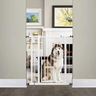 Carlson Extra Tall Walk Through Pet Gate with Small Pet Door, Includes 4-Inch Extension..