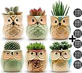 Jomass Owl Pots 2.5 Inch,Flowing Glaze Succulent Pots,Owl Planter/Mini Ceramic Pots,Small Flower/Plant/Cactus/Bonsai Container with Hole 6Pack